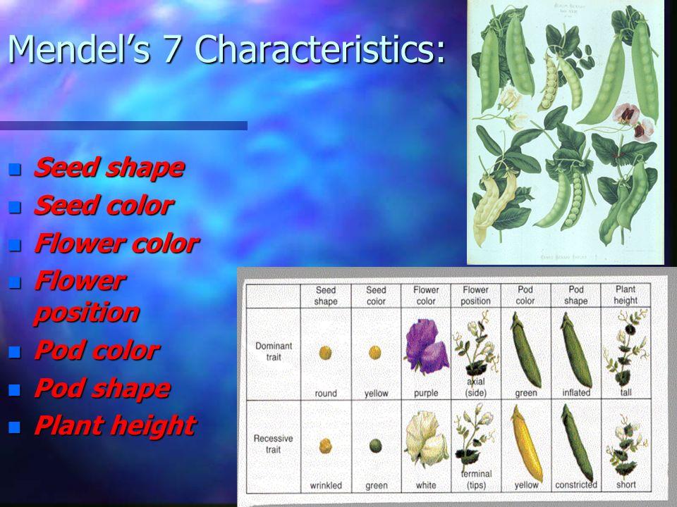 Mendel's 7 Characteristics: