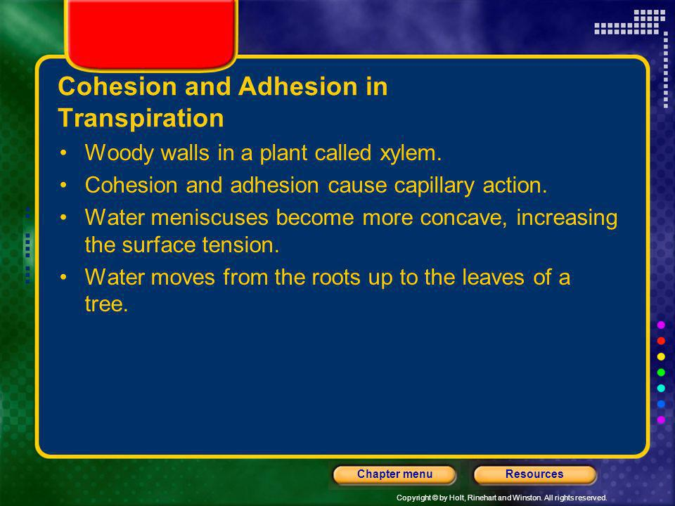 Cohesion and Adhesion in Transpiration