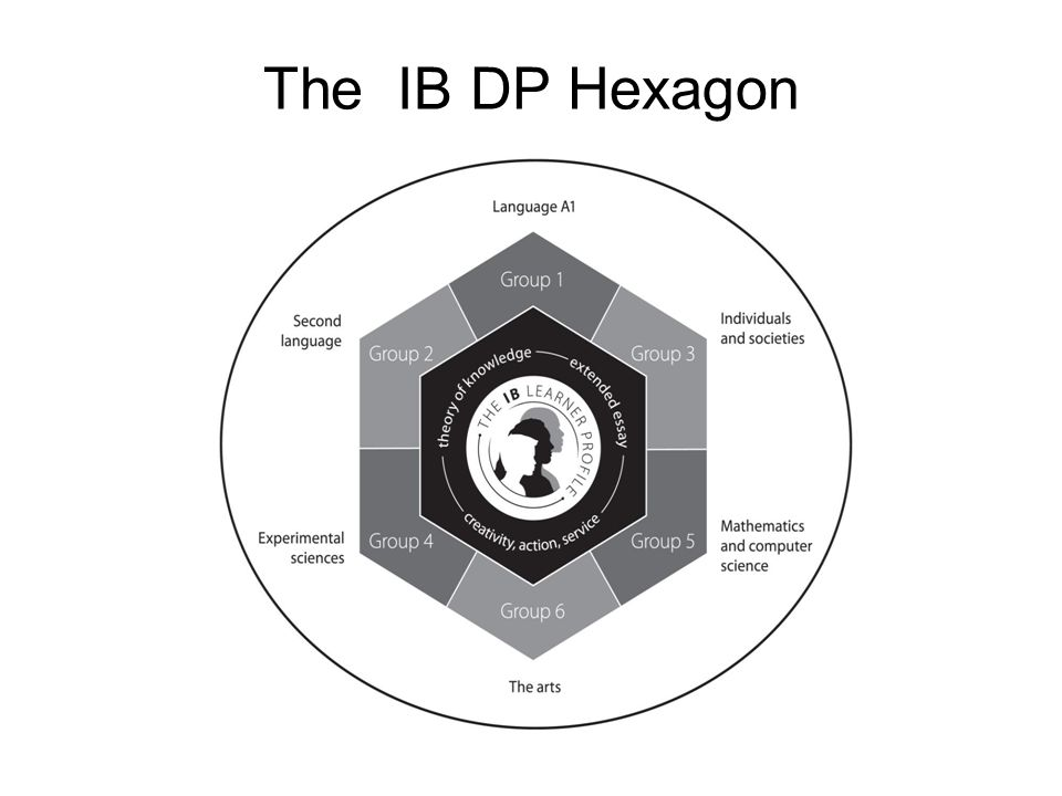 The IB DP Hexagon