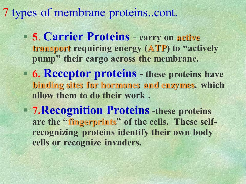 7 types of membrane proteins..cont.