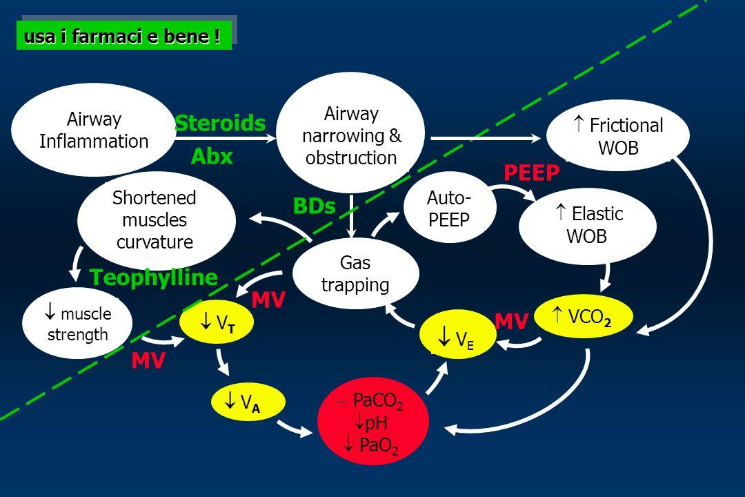 Steroids Abx PEEP BDs Teophylline MV MV  VE MV usa i farmaci e bene !