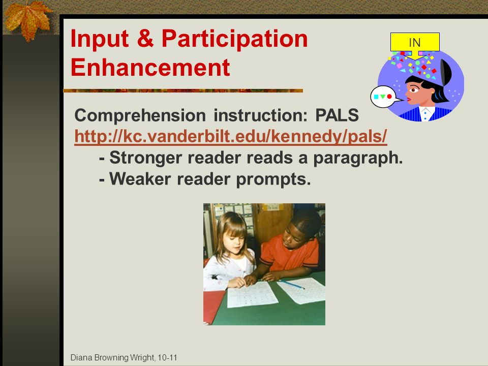 Input & Participation Enhancement Comprehension instruction: PALS