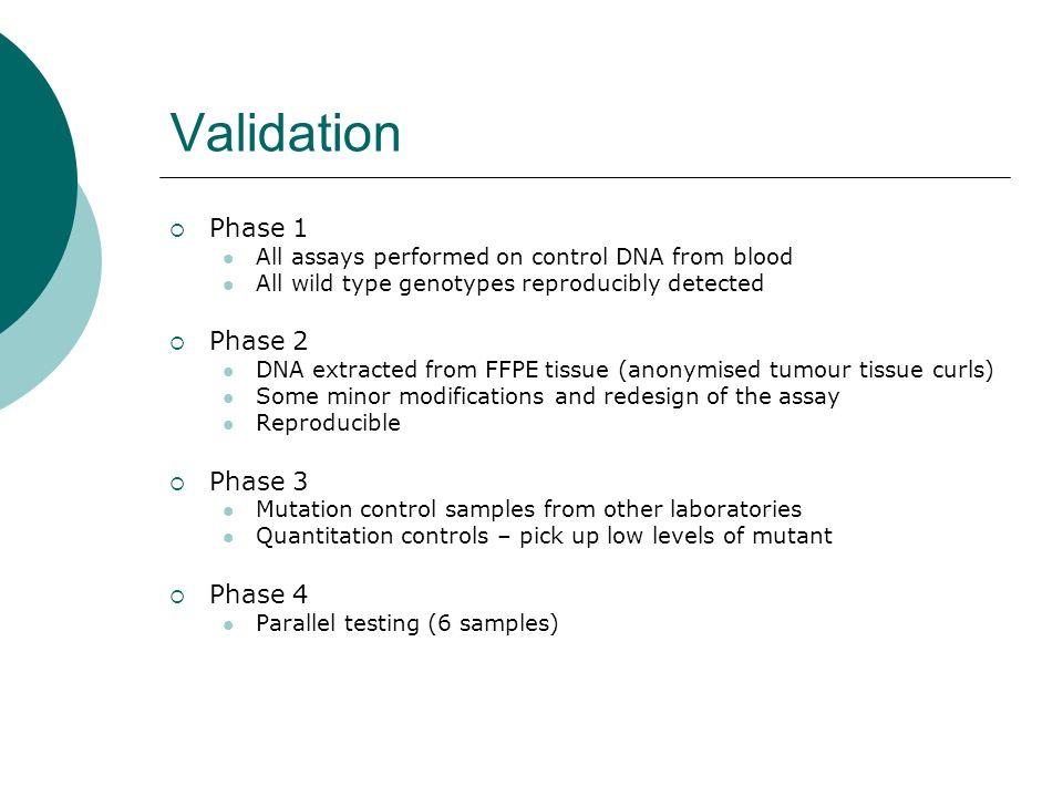Validation Phase 1 Phase 2 Phase 3 Phase 4