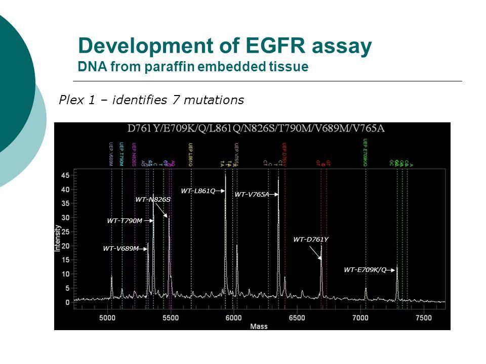 Development of EGFR assay DNA from paraffin embedded tissue