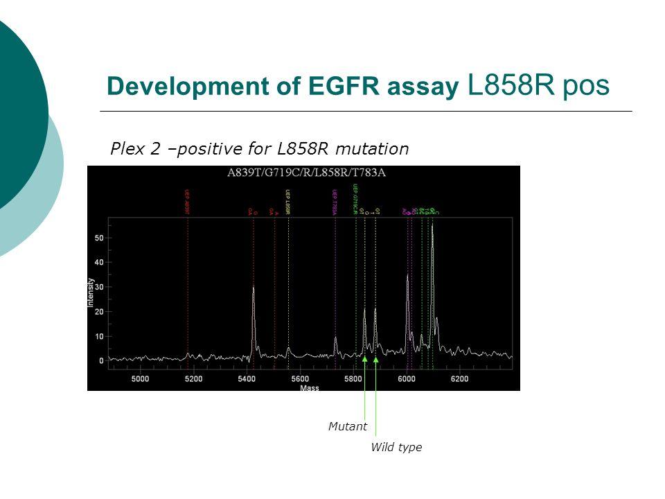 Development of EGFR assay L858R pos