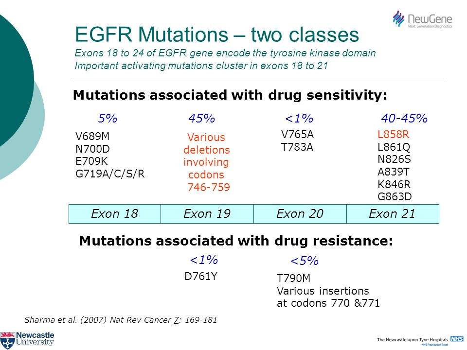 EGFR Mutations – two classes Exons 18 to 24 of EGFR gene encode the tyrosine kinase domain Important activating mutations cluster in exons 18 to 21
