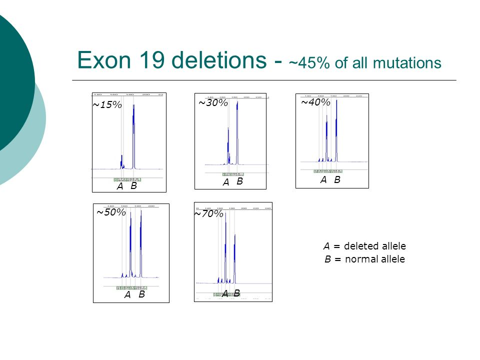 Exon 19 deletions - ~45% of all mutations