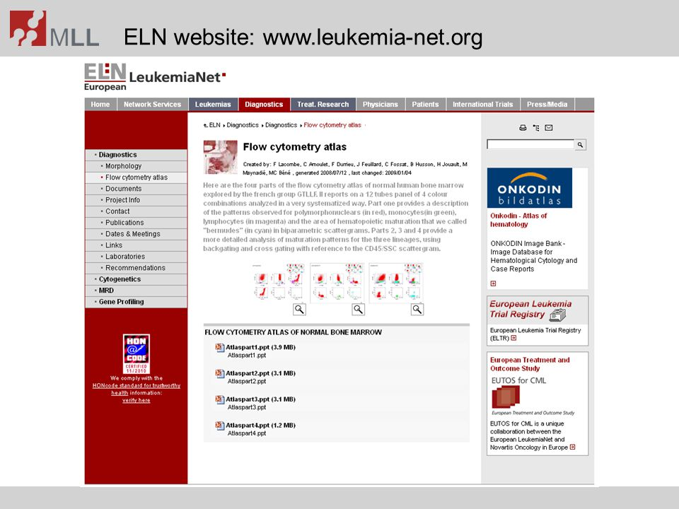 ELN website: www.leukemia-net.org