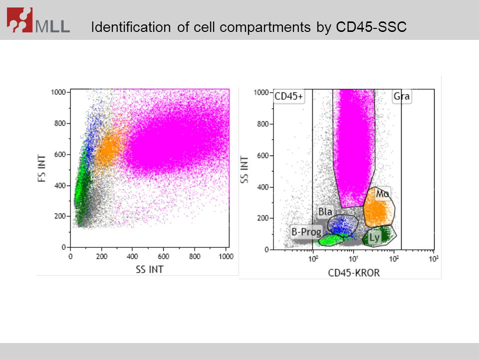 Identification of cell compartments by CD45-SSC