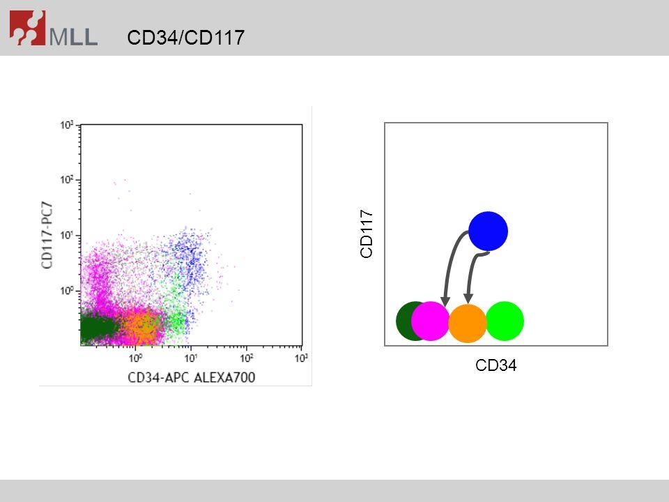 CD34/CD117 CD34 CD117
