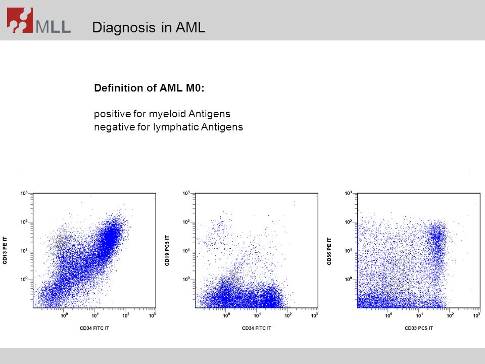 Diagnosis in AML Definition of AML M0: positive for myeloid Antigens