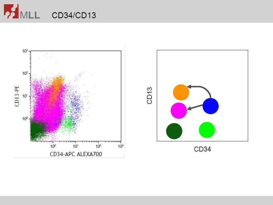 CD34/CD13 CD34 CD13