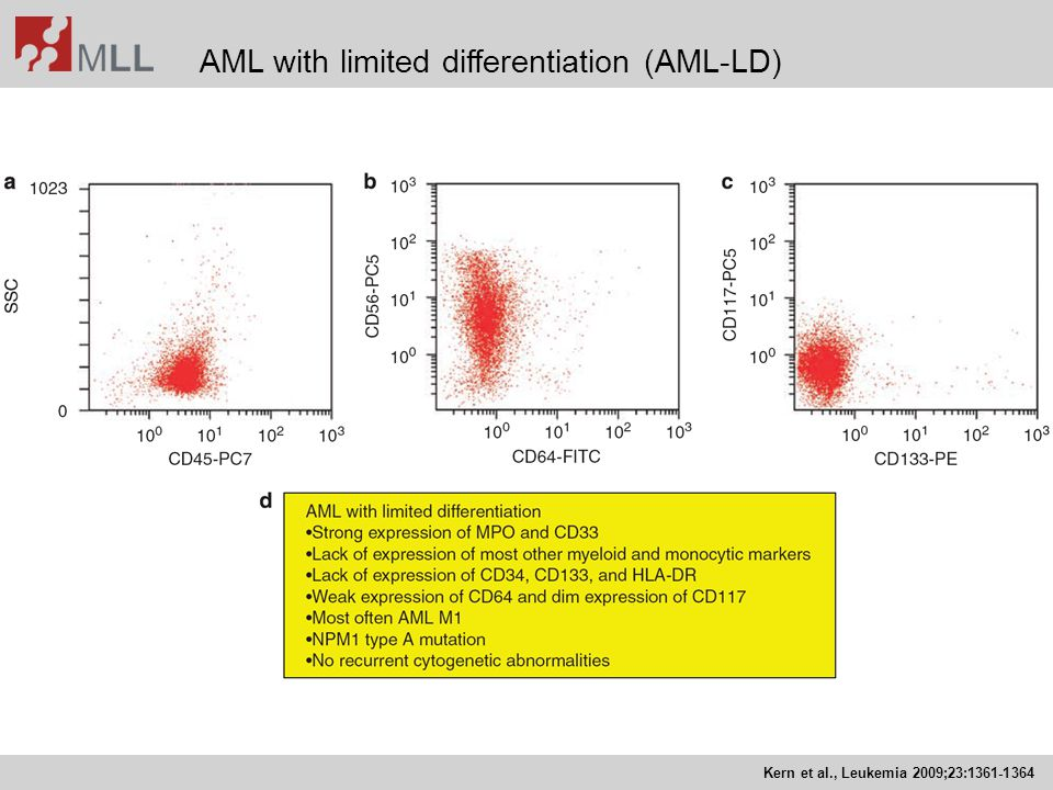 AML with limited differentiation (AML-LD)
