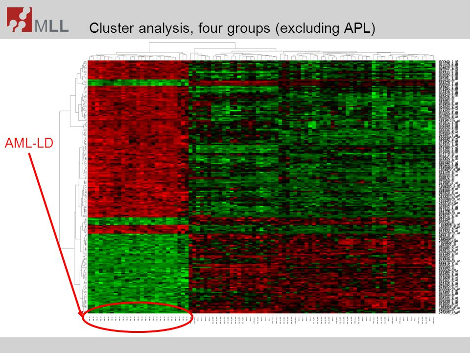 Cluster analysis, four groups (excluding APL)