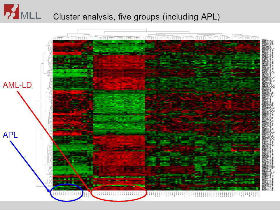 Cluster analysis, five groups (including APL)