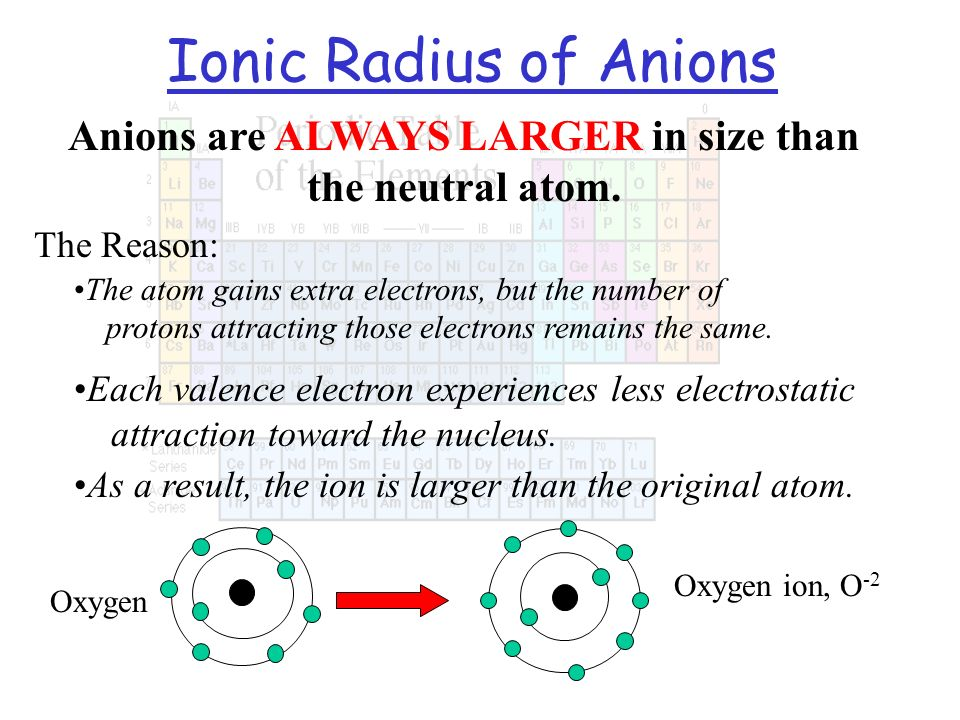 Anions are ALWAYS LARGER in size than the neutral atom.