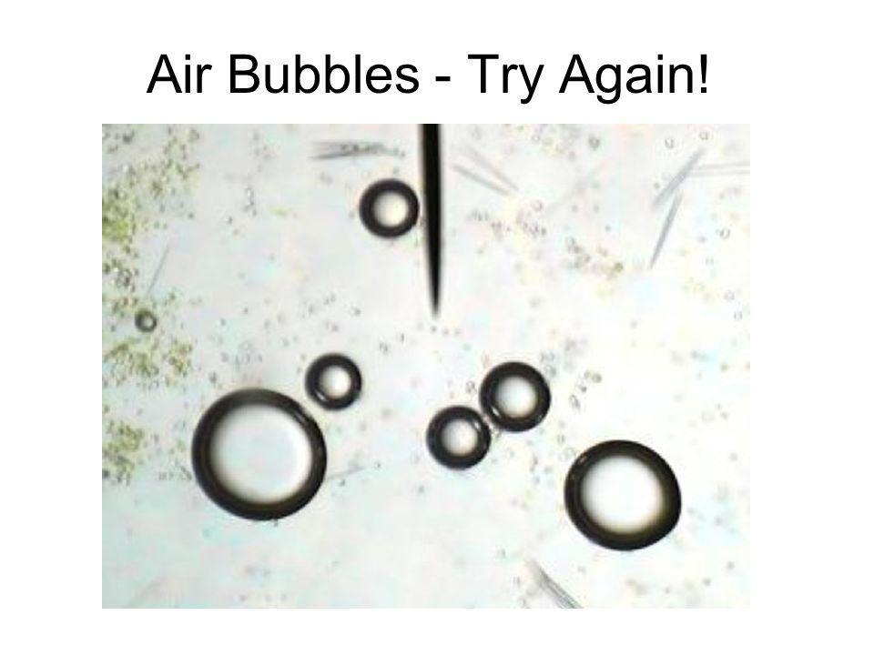 Air Bubbles - Try Again!