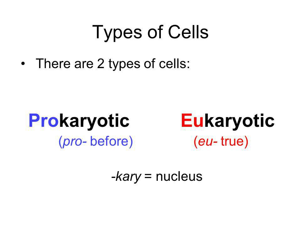 Types of Cells There are 2 types of cells: Prokaryotic Eukaryotic