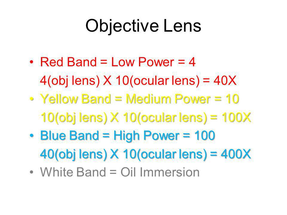 Objective Lens Red Band = Low Power = 4