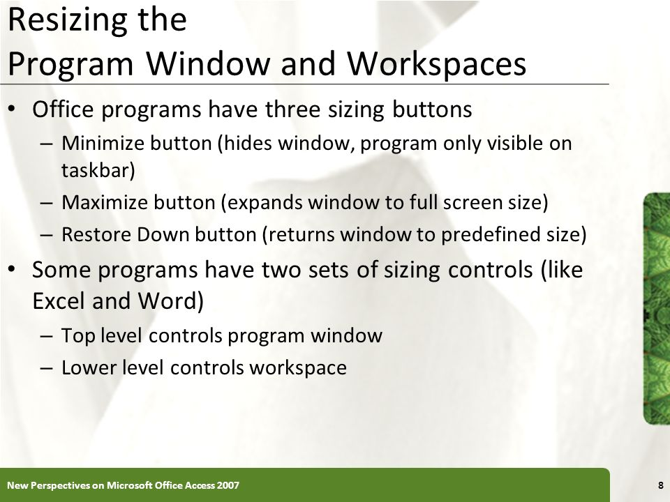 Resizing the Program Window and Workspaces