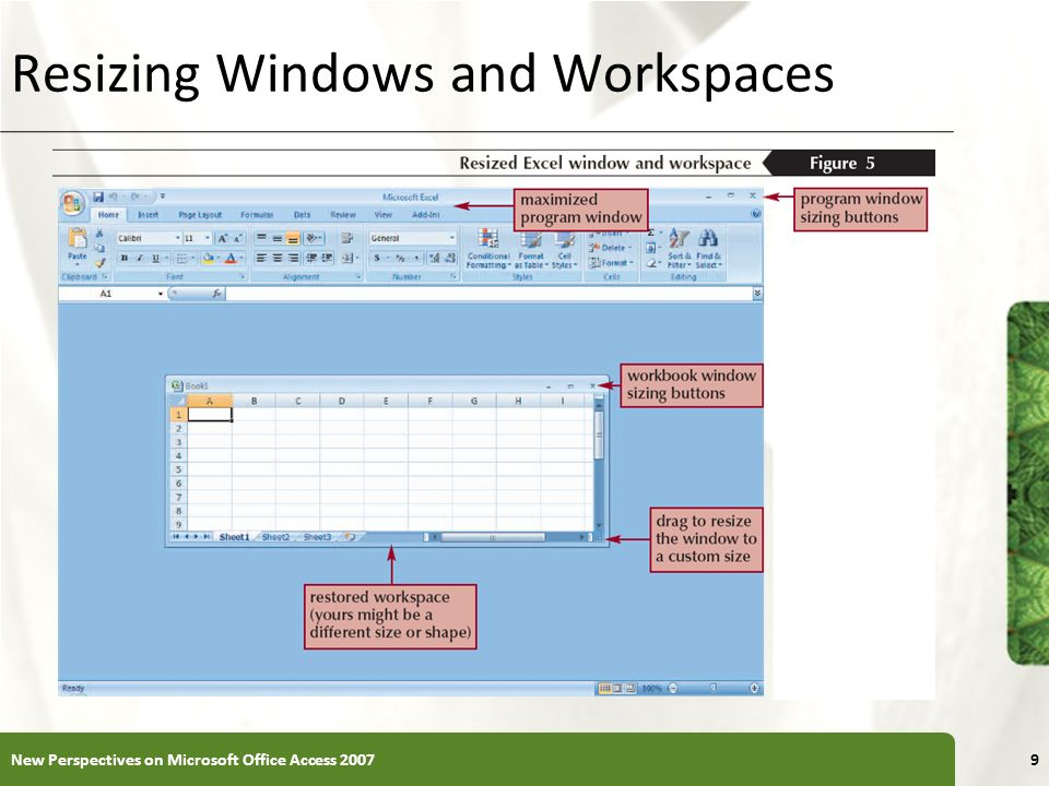 Resizing Windows and Workspaces