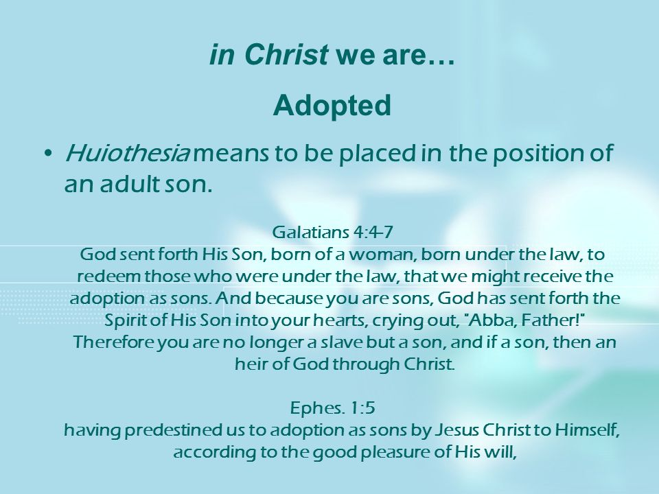 in Christ we are… Adopted