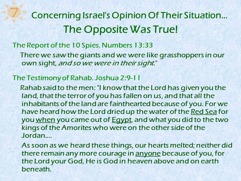 Concerning Israel s Opinion Of Their Situation…