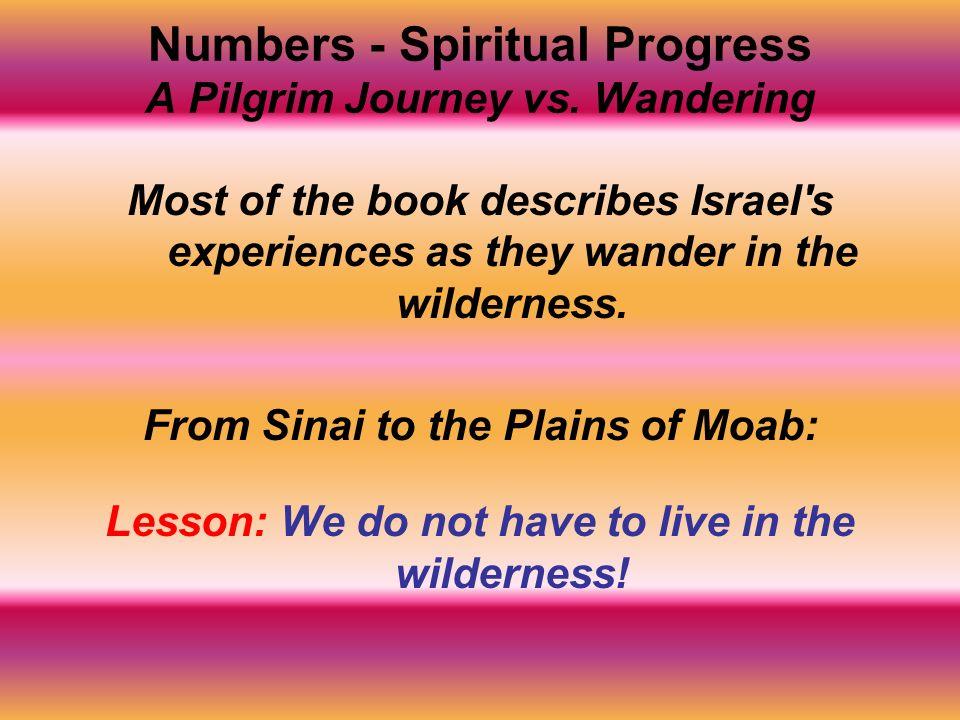 Numbers - Spiritual Progress A Pilgrim Journey vs. Wandering
