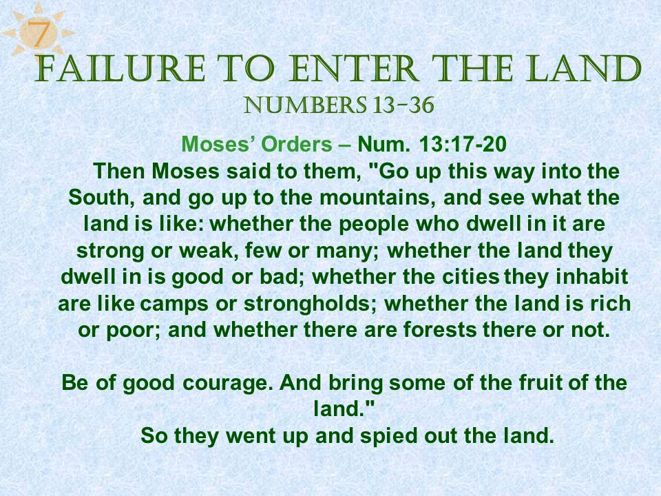 Failure to Enter the Land Numbers 13-36
