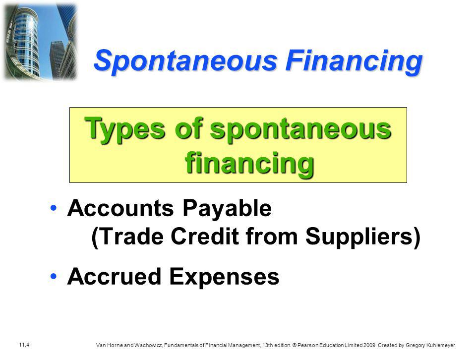 Types of spontaneous financing
