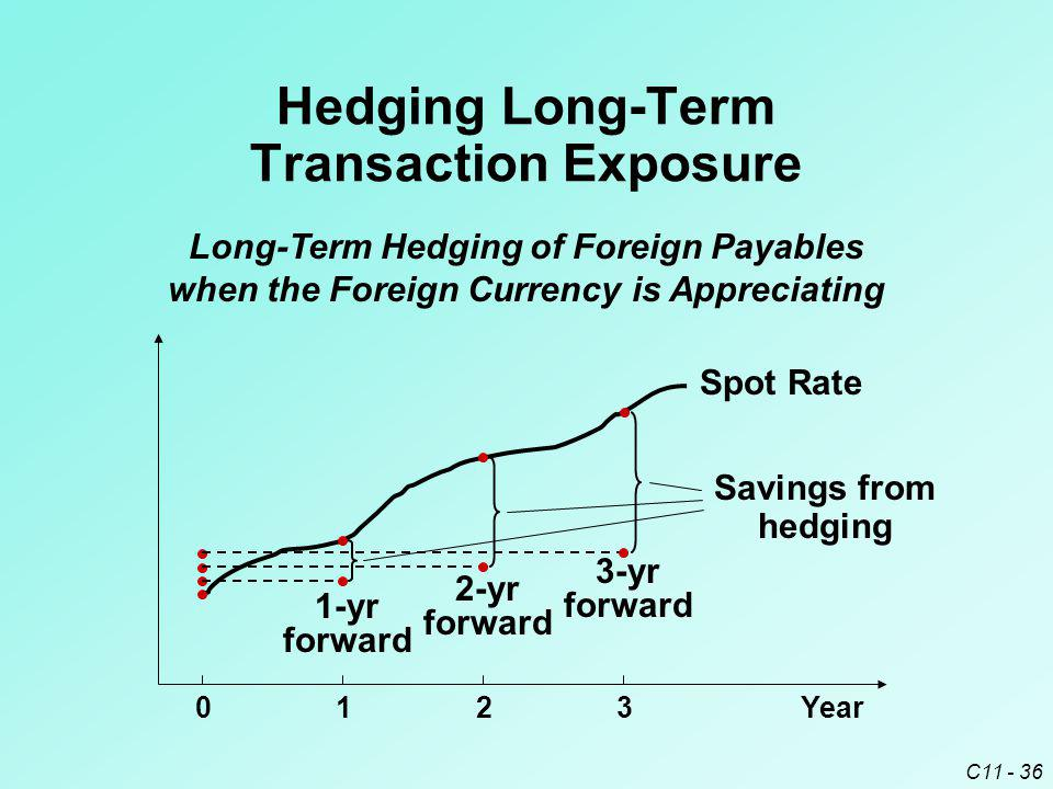 Hedging Long-Term Transaction Exposure
