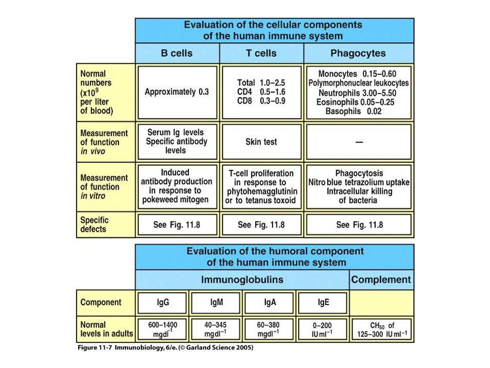 Figure 11-7