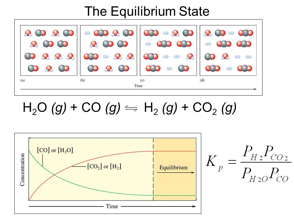 The Equilibrium State H2O (g) + CO (g) H2 (g) + CO2 (g)