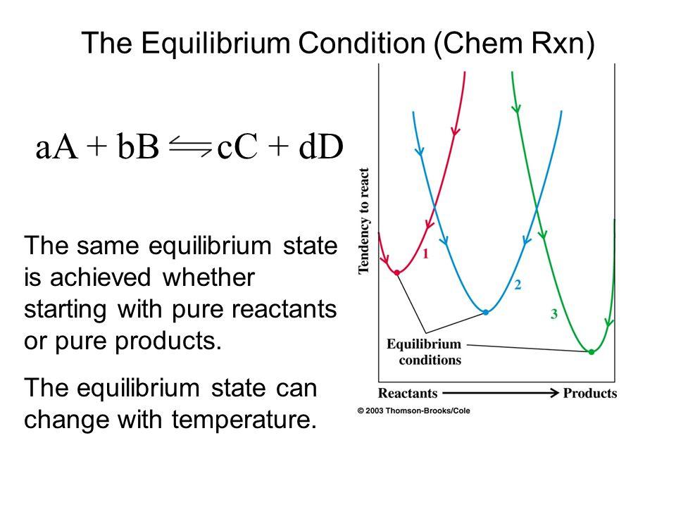 The Equilibrium Condition (Chem Rxn)