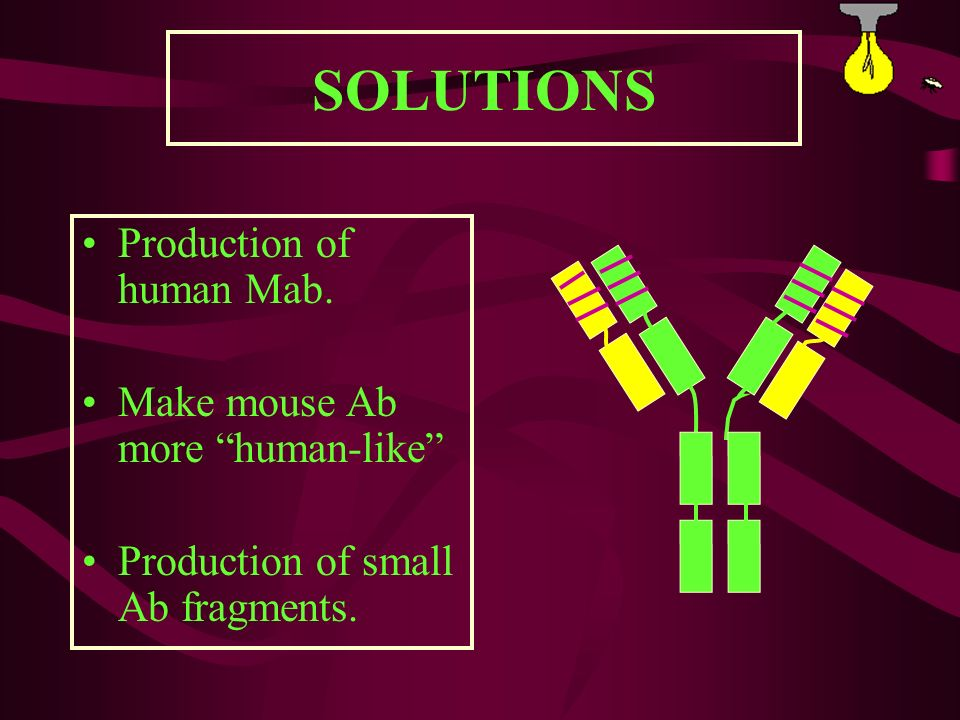 SOLUTIONS Production of human Mab. Make mouse Ab more human-like
