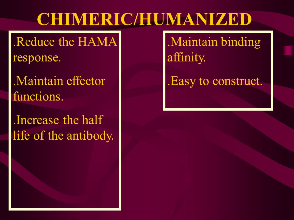 CHIMERIC/HUMANIZED .Reduce the HAMA response.