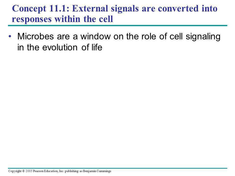 Concept 11.1: External signals are converted into responses within the cell