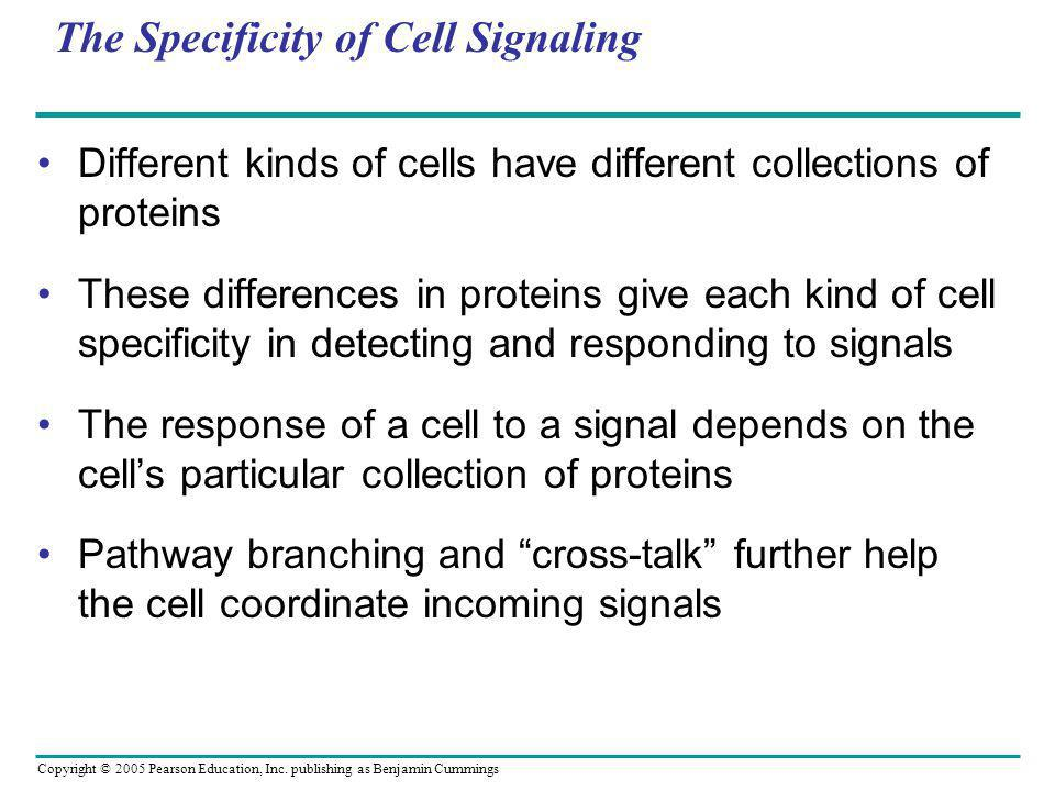 The Specificity of Cell Signaling