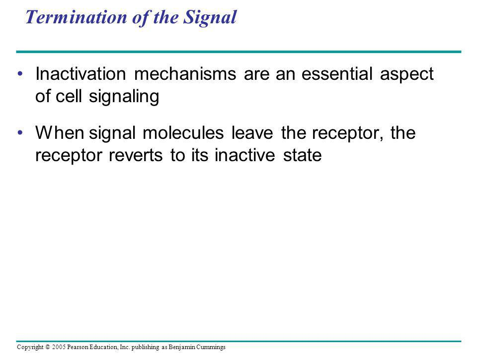 Termination of the Signal