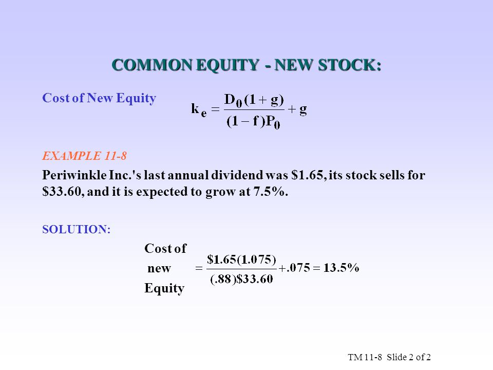 COMMON EQUITY - NEW STOCK: