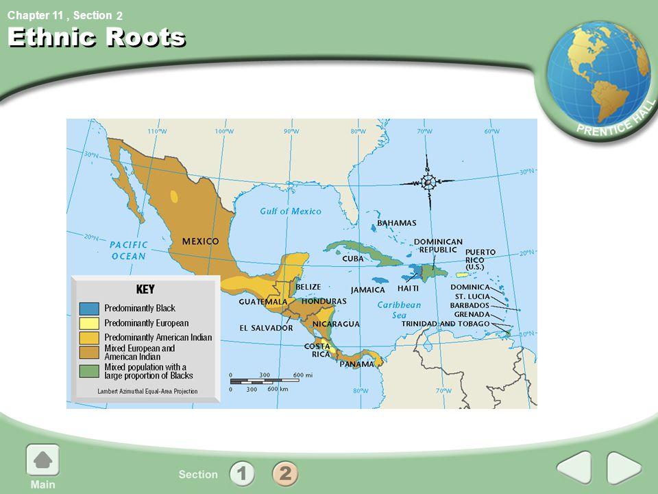 2 Ethnic Roots