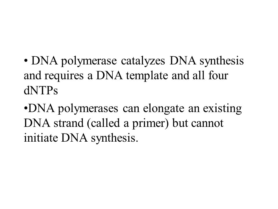 DNA polymerase catalyzes DNA synthesis and requires a DNA template and all four dNTPs