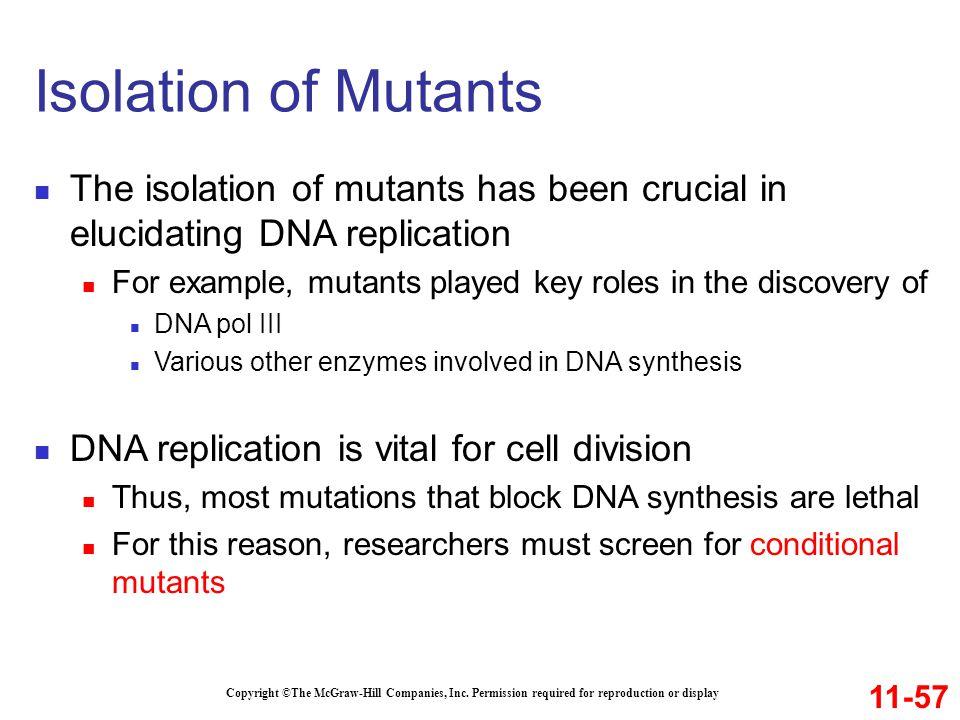 Isolation of Mutants The isolation of mutants has been crucial in elucidating DNA replication.