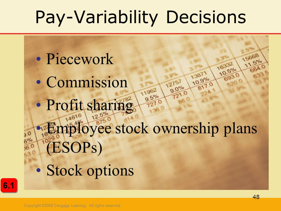 Pay-Variability Decisions