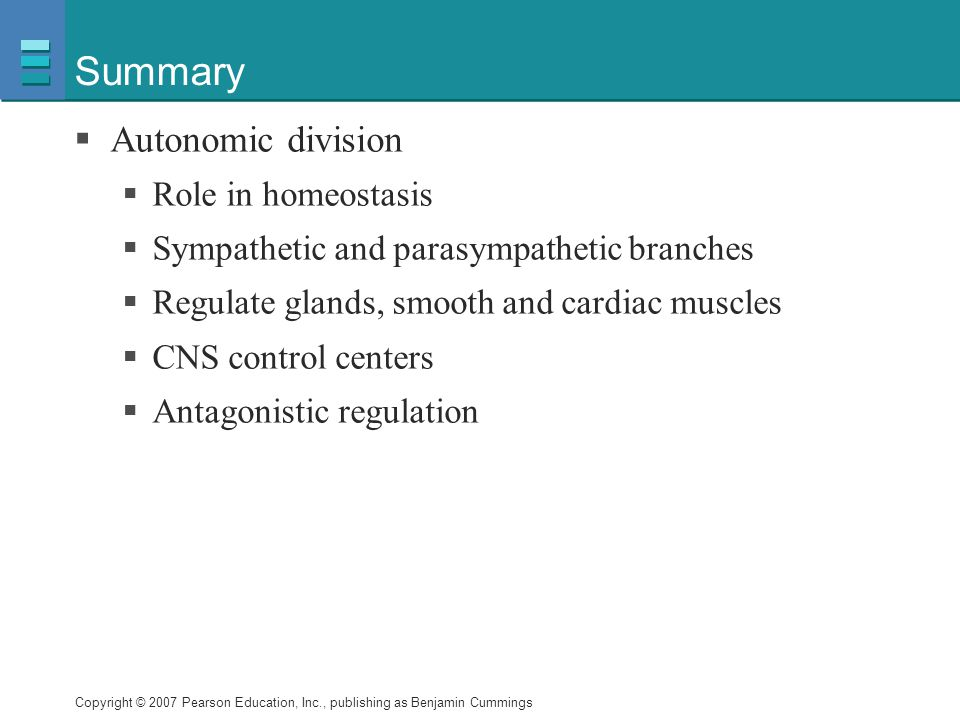 Summary Autonomic division Role in homeostasis