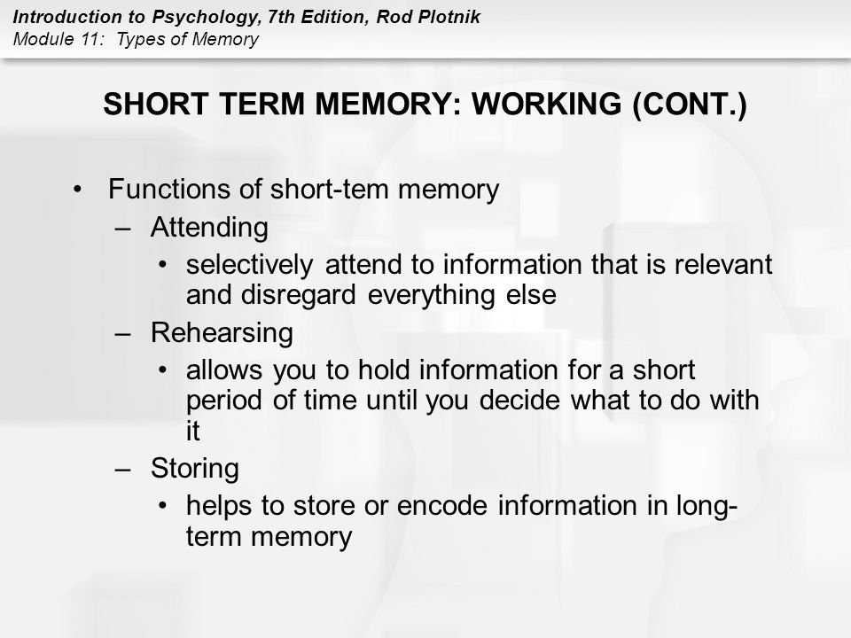 SHORT TERM MEMORY: WORKING (CONT.)
