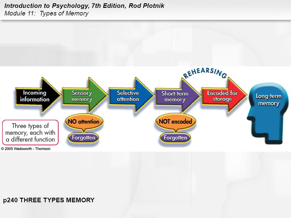 p240 THREE TYPES MEMORY