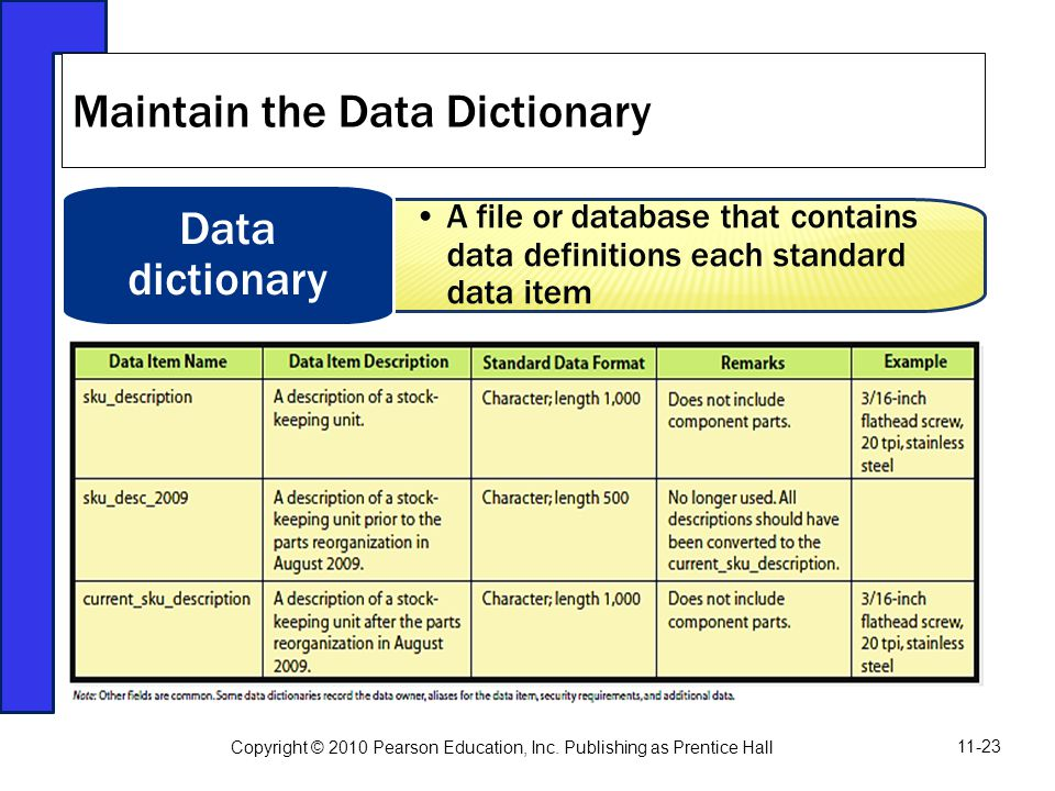 Maintain the Data Dictionary