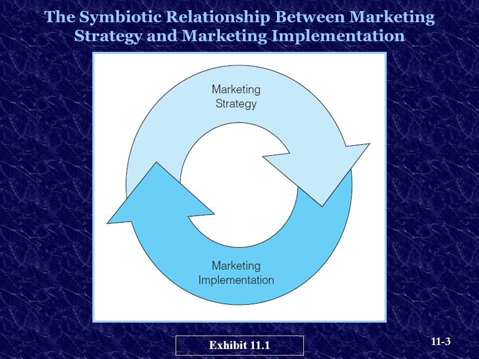The Symbiotic Relationship Between Marketing Strategy and Marketing Implementation