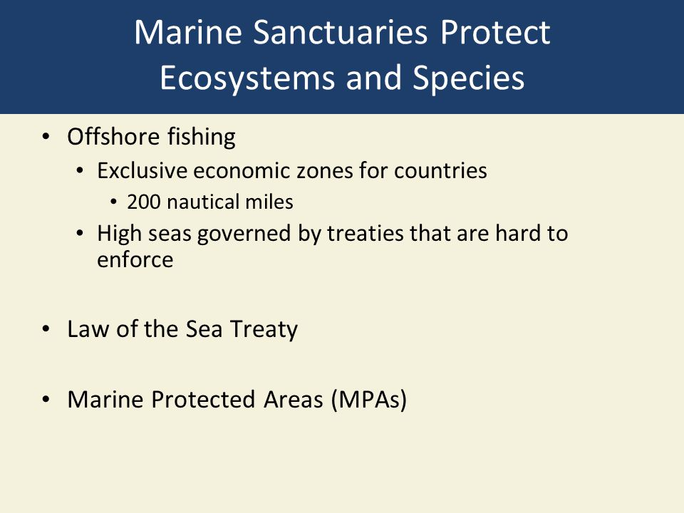 Marine Sanctuaries Protect Ecosystems and Species